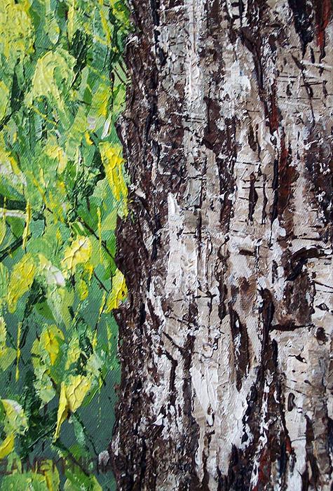 Woodland Series 8 -