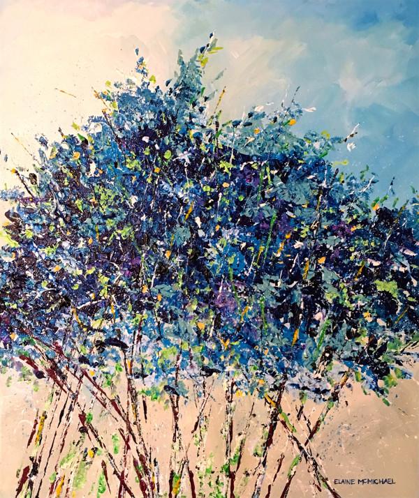 McMichael Blue  Windsor