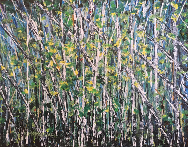 New Birches 11x14